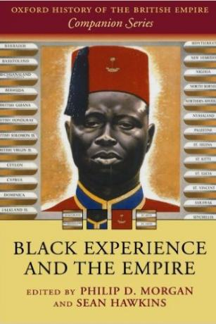 Black-Experience-and-the-Empire-Sean-Hawkins